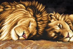 Львы отдыхают. Размер - 39 х 27 см.