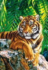 Тигр отец. Размер - 27 х 39 см.