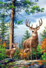 Пара оленей. Размер - 27 х 39 см.