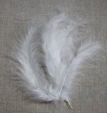 Перья индюшачьи белые.