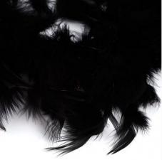 Боа (перо). Цвет-чёрный