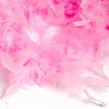 Боа (перо). Цвет-розовый