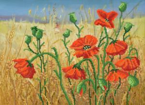 Алые цветы полей. Размер - 36 х 26 см.