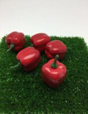 Перец красный декоративный,30 мм,1 шт.