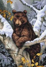 Медведь на дереве. Размер - 27 х 39 см.