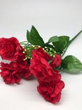Открытая роза.