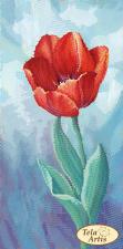 Садовые зарисовки.Тюльпан. Размер - 12 х 24 см.