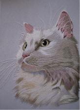 "Набор для вышивки гладью ""Белый кот"". Размер - 13 х 18 см."