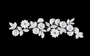 Лейсы пришивные,цв.белый,28х8 см,1 шт.