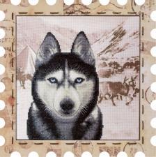 """Набор для вышивания нитками на канве с фоновым рисунком """"Хаски"""". Размер - 24 х 24 см."""
