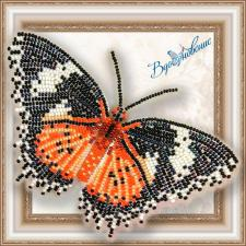 """Набор для вышивки бисером на прозрачной основе """"Бабочка """"Цитозия Библс"""""""""""