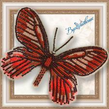 """Набор для вышивки бисером на прозрачной основе """"Бабочка """"Eurytides Ariarathes Gayi"""""""""""
