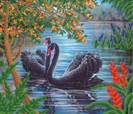Пара чёрных лебедей. Размер - 30 х 26 см.