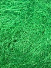 Сизаль (зелёный).