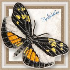 """Набор для вышивки бисером на прозрачной основе """"Бабочка """"Dismorphia eunoe desine"""""""""""