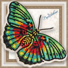 """Набор для вышивки бисером на прозрачной основе """"Бабочка """"Euphaedra edwardsi"""""""""""
