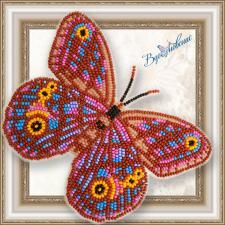 """Набор для вышивки бисером на прозрачной основе """"Бабочка """"Euptychia Agatha"""""""""""
