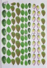 Заготовка для аппликаций на ткани (листья) АОР-15