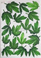 Заготовка для аппликаций на ткани (листья пиона) ОАР-79