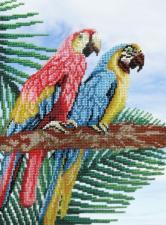 М.П.Студия   Попугаи. Размер - 22 х 28 см
