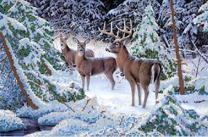 Зимние кружева. Размер - 37 х 23 см.