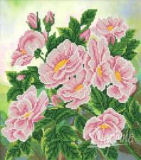Дикая роза. Размер - 26 х 29 см.