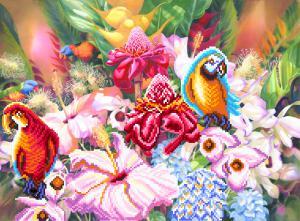 Цветущие тропики. Размер - 49 х 37 см.