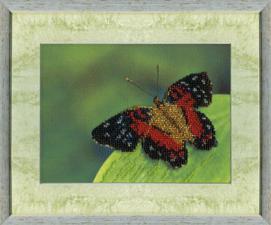 Бабочка. Размер - 19 х 14 см.