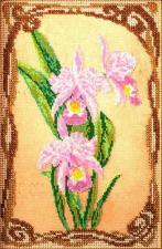 Грациозные орхидеи. Размер - 17 х 26 см.