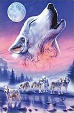 Волки. Размер - 50 х 75 см.