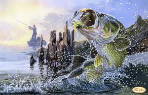 Удачная рыбалка. Размер - 45 х 30 см.