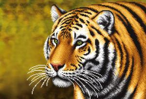 Тигр. Размер - 39 х 27 см.