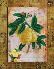 Фрукты.Лимон. Размер - 16,5 х 21,5 см.