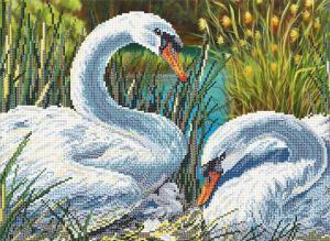 Лебединая семья.