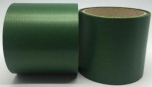 Лента Аспидистра (зелёный). Ширина 8 см.