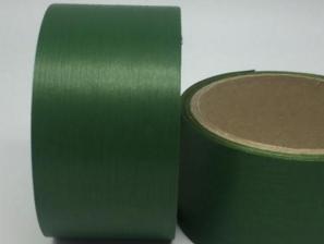 Лента Аспидистра (зелёный). Ширина 5 см.