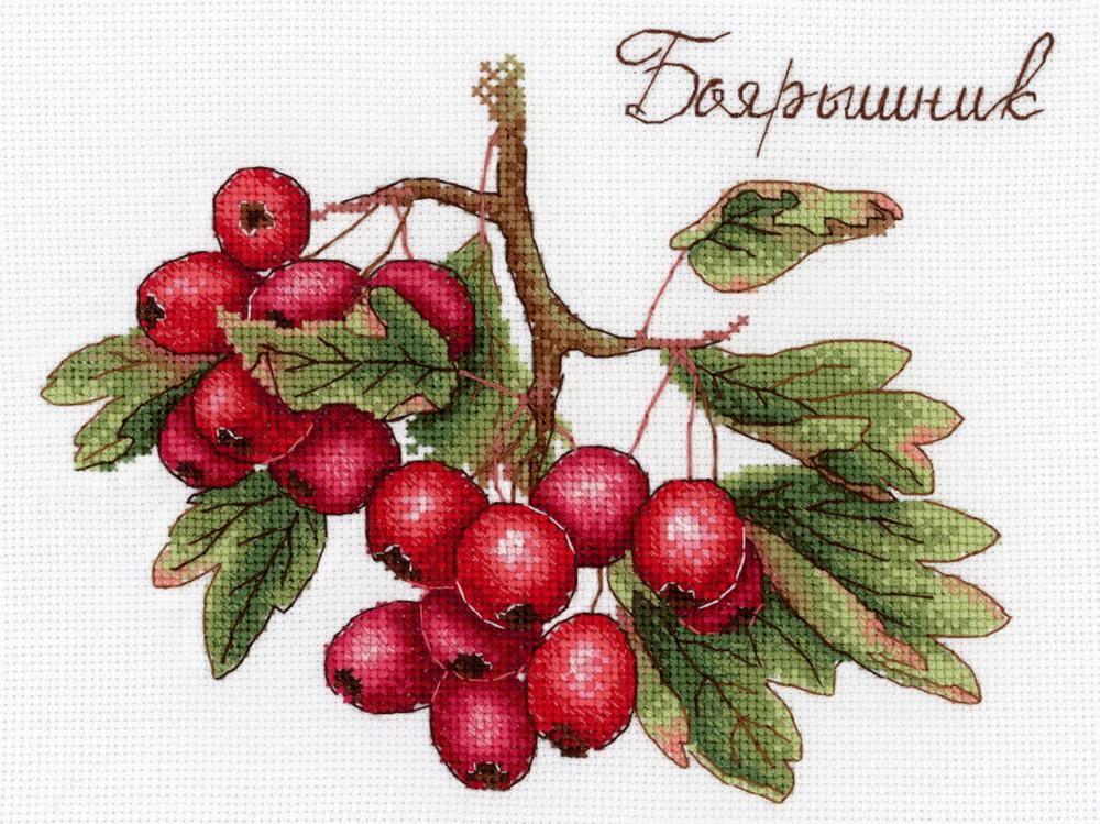 Вышивка фрукты ягоды 84