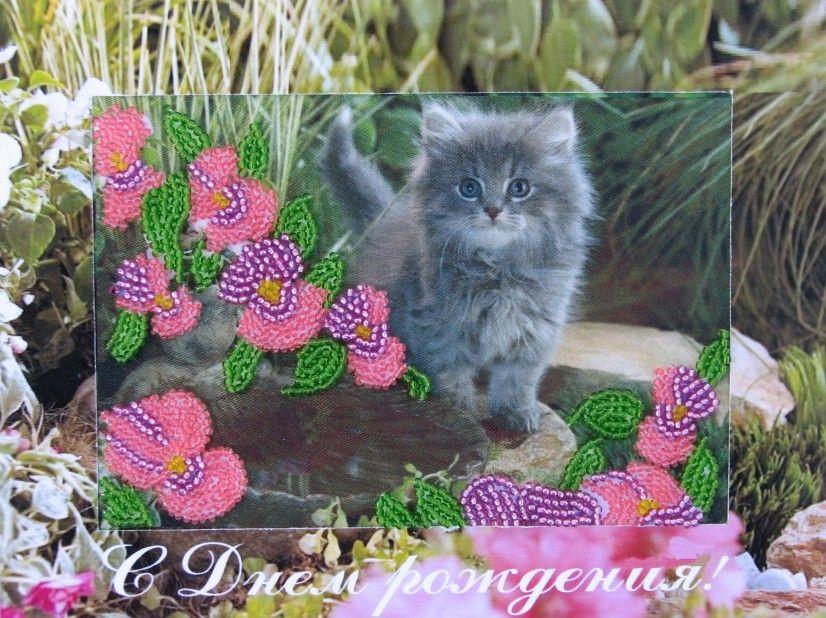 Поздравление с покупкой котенка 97